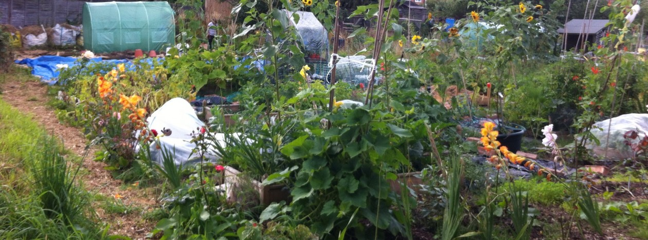 horticultural 'obbit