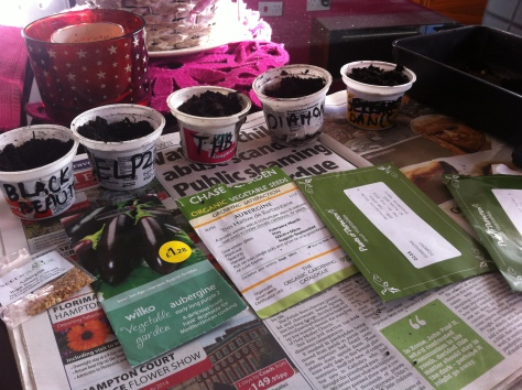 seeds_pots